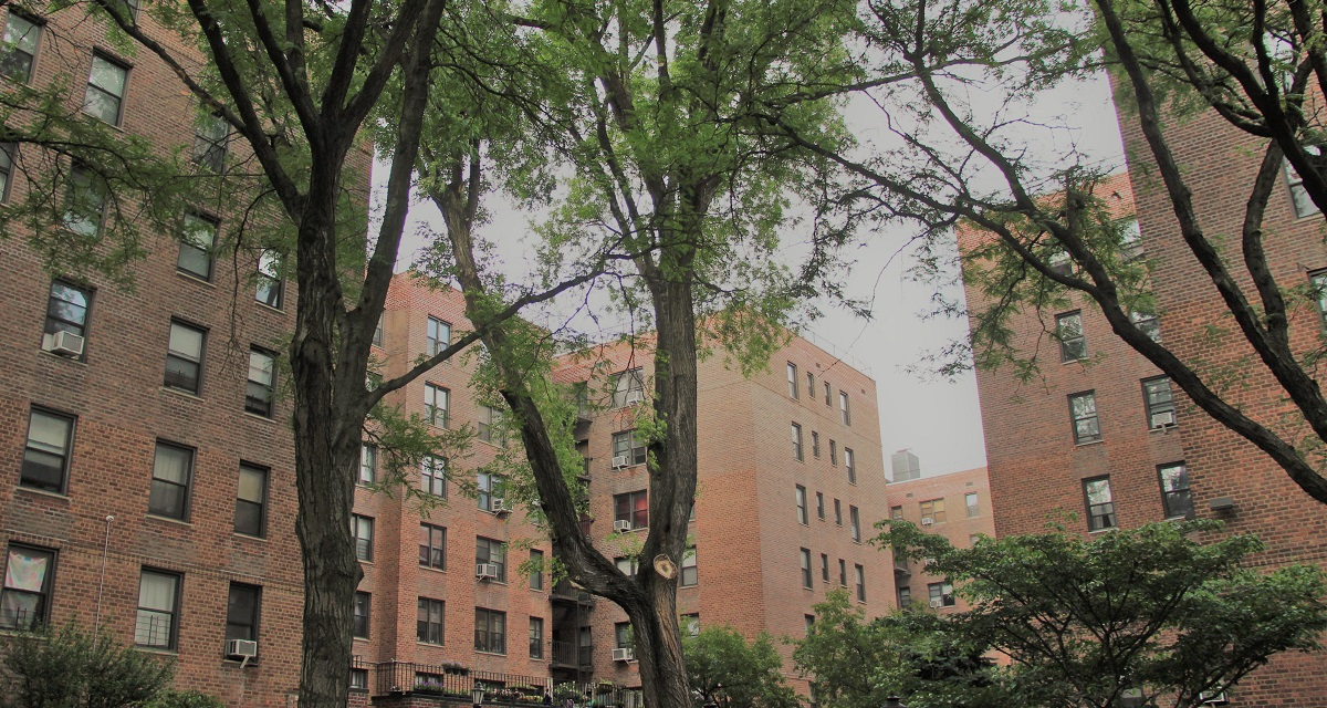 Your Forest Hills Apartment Rentals Cheat-Sheet